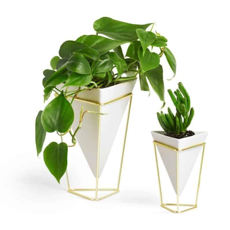 Desk Size Planter