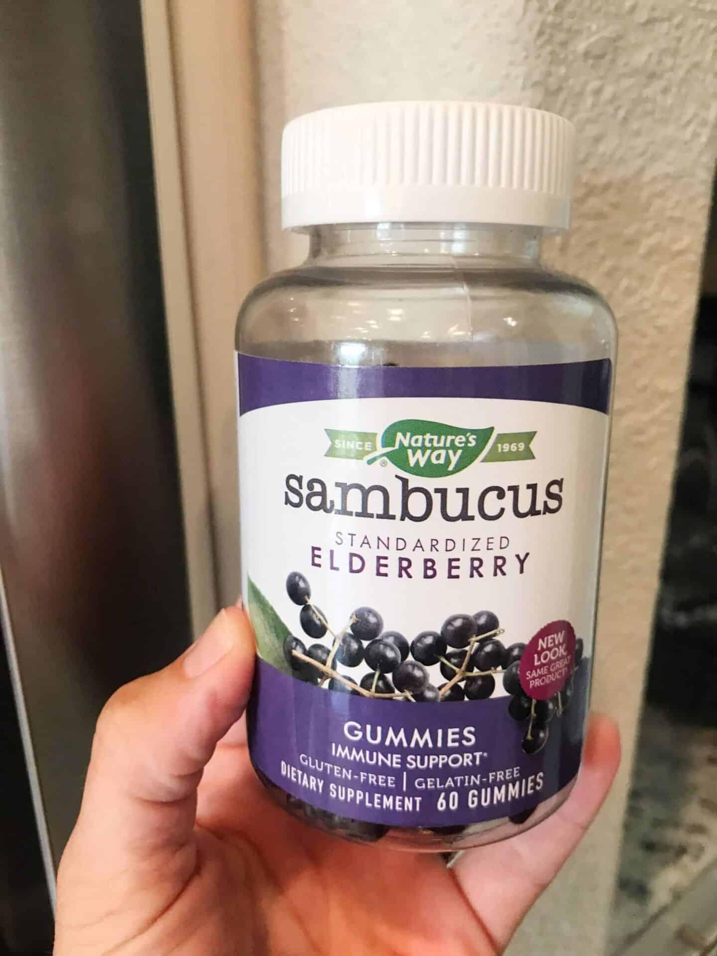Elderberry Gummies for Immune Support Back to School