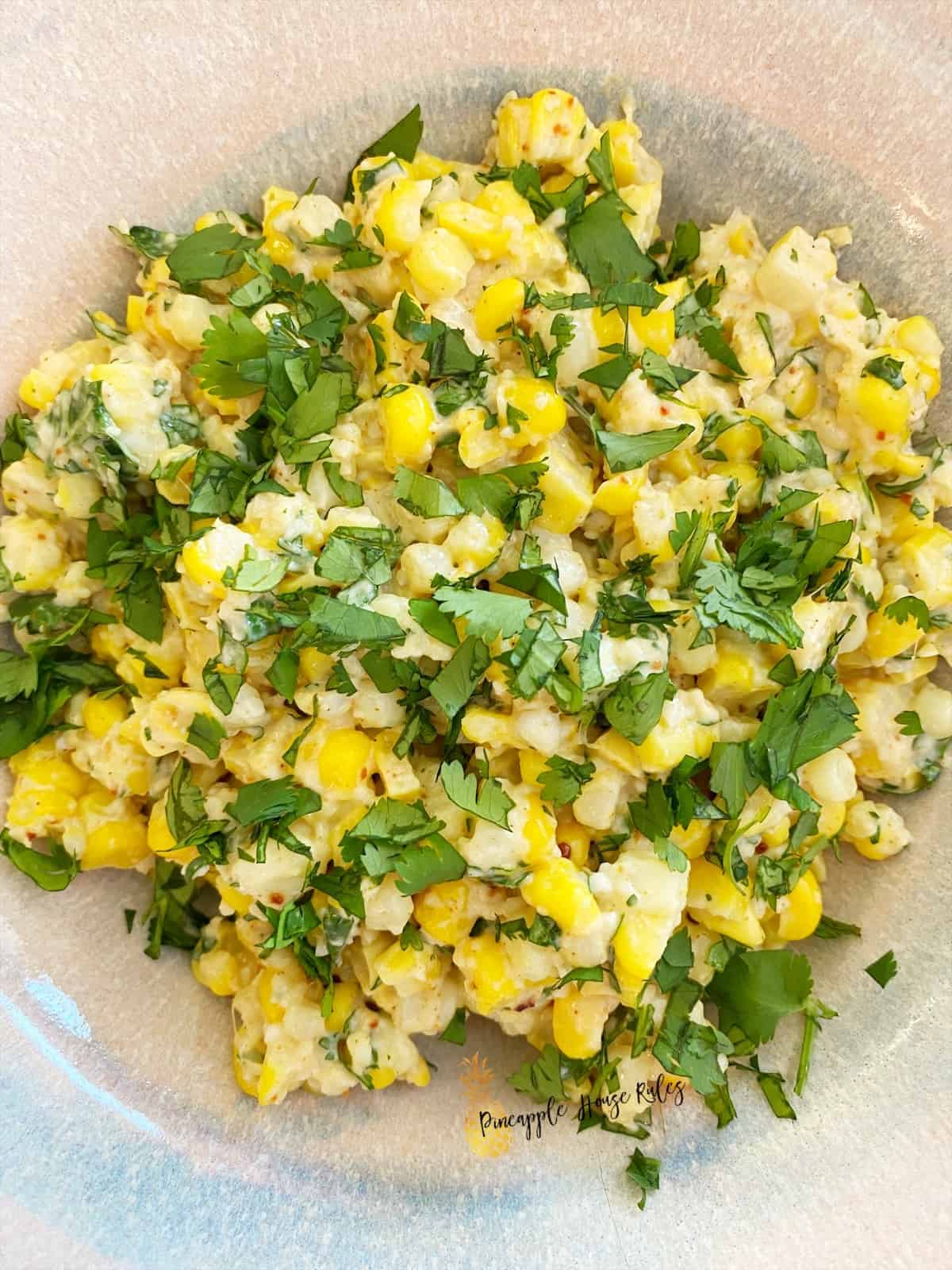 Mexican-Street-Corn-Elote-close-up-2